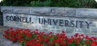 """La Universidad de Cornell en Nueva York, está empezando a ser conocido como la """"Universidad de la Muerte"""", ¿por qué?"""