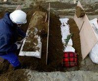 Sigue en aumento la cifra de muertos en Japón. Foto Reuters