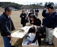 Las víctimas mortales son de 11 mil 578 y los desaparecidos suman 16 mil 451. Foto Reuters