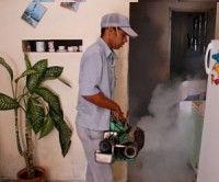 Campaña intensiva de fumigación