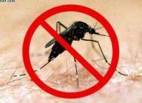 Cuba lucha contra el dengue