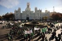 Protesta de profesores y alumnos en España. Foto: REUTERS/Susana Vera