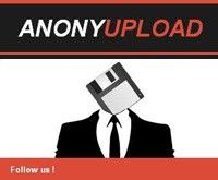 Anonymous ha abierto sitio alternativo seguro a Megaupload