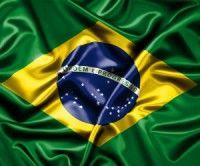 Suman 210 los muertos por gripe A (H1N1) en Brasil