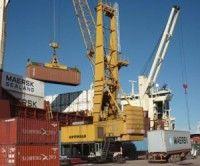 Ante la OMC, Argentina denunció las trabas comerciales de EE.UU.