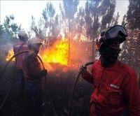 Casi 8 mil bomberos luchan por extinguir el fuego en Portugal