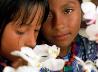 Millones de niñas son obligadas a casarse anualmente