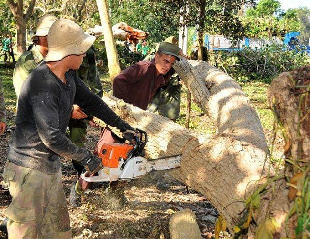 Participación de la FAR junto al pueblo en la recuperación en Cuba