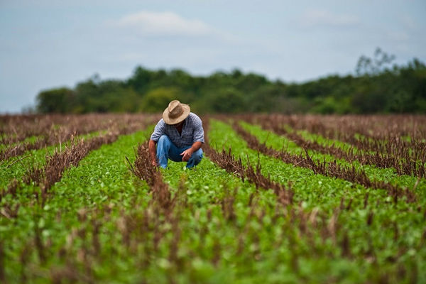 Recibirá Cuba donativo de la India para incentivar producción agrícola