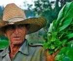Esta contribución de los campesinos se extiende también hacia otras instituciones. Foto: ACN