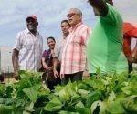 Salvador Váldes Mesa, vicepresidente de los Consejo de Estados y de Ministro en recorrido por La Habana