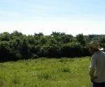 Roberto Guzmán obtuvo 11,42 hectáreas (ha) de tierras en usufructo por el Decreto Ley 300 en el año 2015